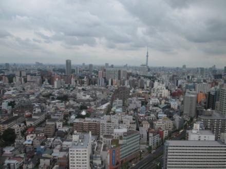 文京シビックセンター展望室からの眺め(曇天)