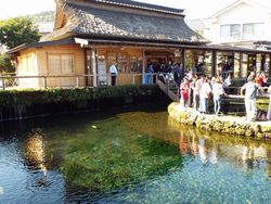 忍野八海の浅間神社