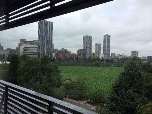 上野伊豆栄6階からの眺め、不忍池